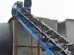 煤泥烘干机生产现场视频